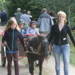 Ratsastuspaikalla pääsi sekä hevosen selkään että kärryn kyytiin.