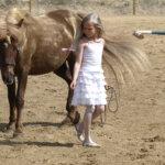 Hevosten ystävät nuuhkivat tallin tuoksuja