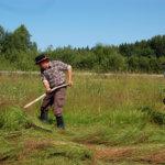 Metsä- ja maatalousnäyttely Vanhalla Savotalla