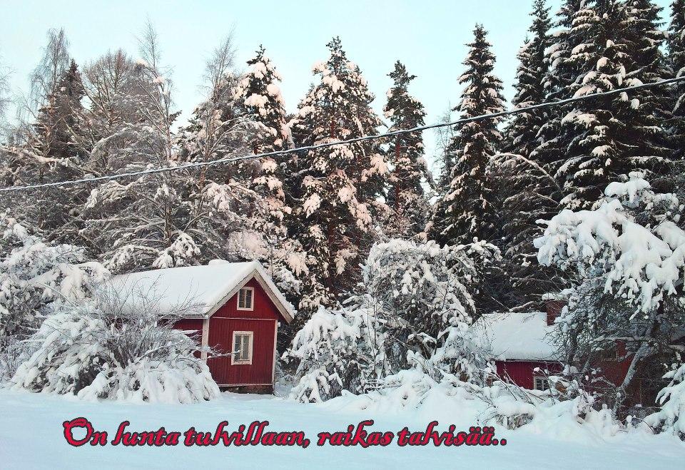 Mukavaa Joulun Odotusta