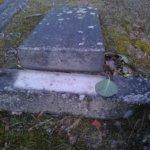 Tuhoja kymmenillä haudoilla