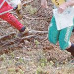 Suunnistajat kisaavat Kuohenmaalla tiistaina
