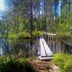 Laipan syysretki vie järvimaisemiin