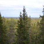 Myötämielisyyttä luonnonsuojelualueille