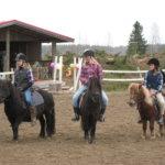 Rentoa hevostelua hyvässä seurassa