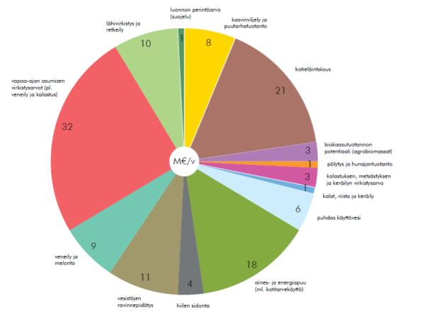 ekosysteemipalvelut määritelmä Riihimaki