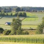 Huutokauppaa, kesäkahvilaa, mato-ongintaa ja retkeä