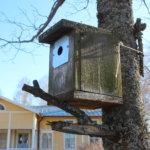 Pappilan etupihalla on paljon linnunpönttöjä, joita ei helposti huomaa.