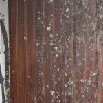 Kaataako oppi ojaan – joutavatko vanhat käytöstavat romukoppaan?