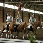20 vuotta hevosten parissa