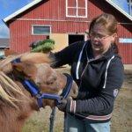 Kun hevonen voi hyvin, myös ratsastaja nauttii