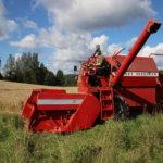 Osa Pälkäneen viljelijöistä on jo aloittanut puinnit – Kuivuus ja paahde kurittaneet jyväkokoa armotta