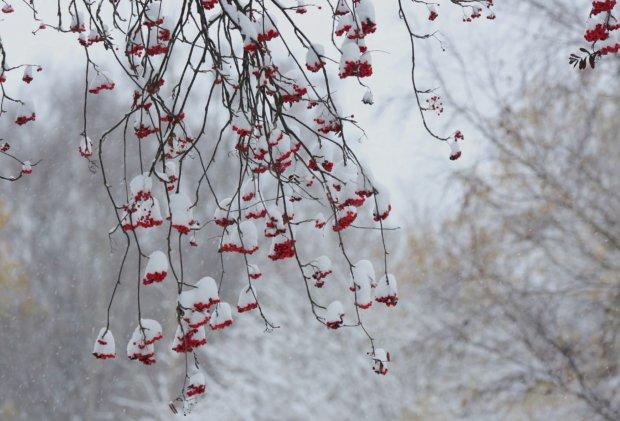 Ensimmäinen lumi Pälkäneellä 26. lokakuuta. Kuva: Ingrid Tiitre
