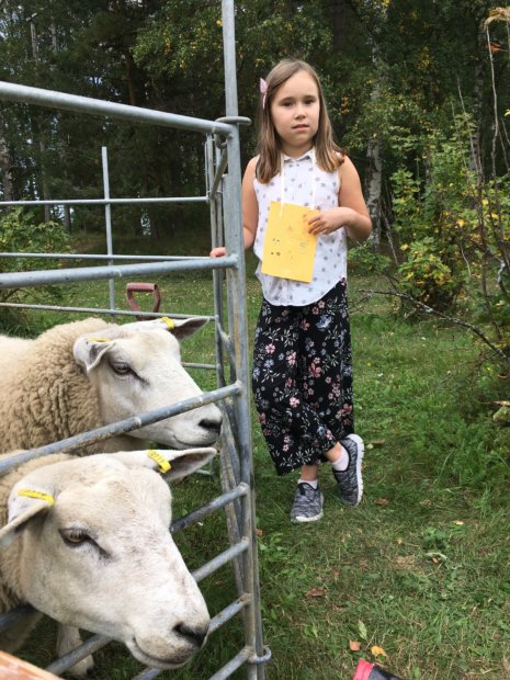Nella Virtanen Äijälän lammasfarmilta.
