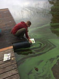 Kesän 2018 klorofylliä käsittelevällä leirillä tuuli toi Jouttesselän rantaan vihreääkin vihreämmän sinilevälautan… Kuva: Outi Nummi
