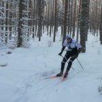 Lumi saa suunnistajat hiihtämään – Veikko Hakulisen hiihorasteille odotetaan satoja osallistujia