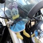 Iines-maskotti roikkuu Reija Lahtisen Suzuki Intruderissa mukana reissuilla.