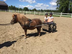 Laaksolan ratsutallilla pääsee perinteiseen tapaan ponikärryajelulle.