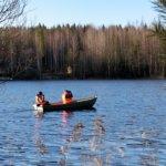 Pitkäjärven kunnostusyhdistys seuraa linnuston tilan kehittymistä Linkolan jalanjäljissä ja järven hyvinvointiä silmällä pitäen