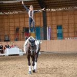Uskaltaudutko voimistelemaan liikkuvan hevosen selkään? Vikeltäjät uskaltavat