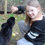 Lilli perusti kanikahvilan