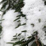 Tänä talvena on saatu nauttia kunnon talvesta – tiesitkö tämän lumesta?