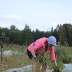 Kyötikkälässä voi aloittelijakin kokeilla viljelyä – Paula Ojala harrastaa puutarhanhoitoa kasvipalstalla ja kotipihassa