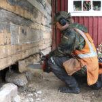 """Perinnerakentaja kannattaa puuta – Mikko Timosella on pyyntö vanhojen metsien omistajille: """"Myykää puut puutavaraksi, ei sellukattilaan"""""""