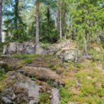 Sydän-Hämeen lakipisteitä metsästämässä – Pälkäneen Ahdinvuorella tulee mieleen ajatus siitä, kuinka ihmiset piirtelevät rajaviivoja, ei luonto