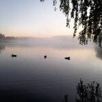 Lukijan kuva: Aamun rauhaa Padankoskella
